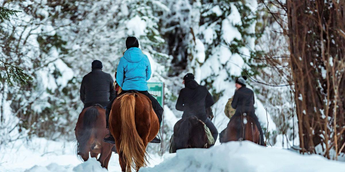 Winterreiten - Winterurlaub in Radstadt, Ski amadé